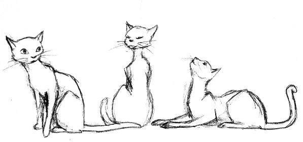 Dessin chat python - Dessins de chats stylises ...